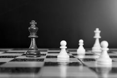 Chess on a chessboard. Chess photographed on a chessboard with creative background Royalty Free Stock Image