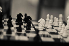 Chess Stock Photography