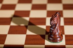 Chess piece - a black knight on a chessboard. Stock Photos