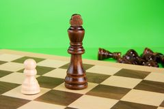 Chess piece on green background Royalty Free Stock Photos