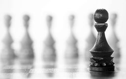 Chess piece pawn on board. Chess piece pawn piece on board on white backgroundr Stock Photo