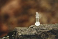 Chess piece on rock