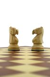 Chess pieces. Two white knights Stock Photos