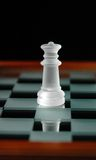 Chess pieces-19 Stock Photos