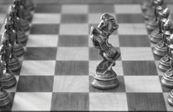Chess Pieces. A knight, alone in the middle of the chess board, advances to meet the opposition Royalty Free Stock Images