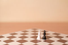 Chess pieces as metaphor - homosexual love. Chess pieces as metaphor - two kings as homosexual couple of two gays. Creamy tint and shlow focus stock images