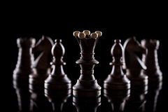 Chess pieces on black background Stock Photography