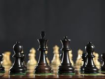 Chess pieces on board Stock Photography