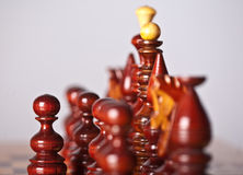 Chess pieces on board Stock Images