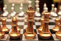 Chess pieces. On a Chess Board Royalty Free Stock Images