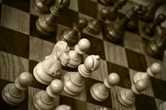 Chess. Pieces on a board Stock Photography