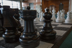 Chess pieces board black pieces foreground. Big chessboard indoor knight tower Stock Photography