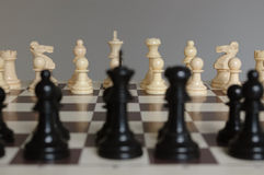Chess. Pieces on the board ready for battle Royalty Free Stock Photos