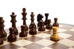 Chess pieces on the board. On white background Stock Image