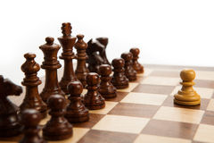 Chess pieces on the board. On white background Stock Photography