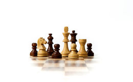 Chess pieces on the board Royalty Free Stock Images
