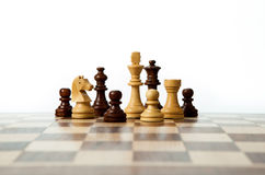Chess pieces on the board. On white background Stock Photos