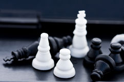Chess pieces in a box Royalty Free Stock Photography
