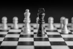 Chess pieces on chessboard black and white. Royalty Free Stock Photos