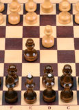 Chess pieces and chessboard Royalty Free Stock Images