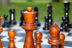 Chess pieces close up Stock Images