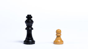 Chess pieces. In front of white background - concept of bravery Stock Image