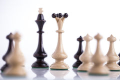 chess pieces on glass Stock Photos