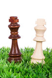 Chess Pieces on Grass Royalty Free Stock Photography