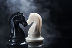 Chess pieces knight. On dark background Stock Images
