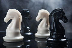 Chess pieces knight Royalty Free Stock Photography