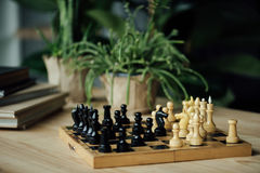 Chess pieces knights standing head to head on chessboard on the table. With plants and books Royalty Free Stock Photo