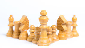 Chess pieces. Lined up in front of white background - Concept of leadership Royalty Free Stock Photo