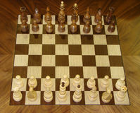 Chess pieces lined up Stock Images