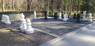 Chess pieces in the park royalty free stock photo