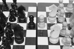 Chess. The chess pieces are placed on the chessboard.  Four knights debut. Black and white Royalty Free Stock Photo