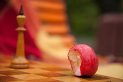 Chess pieces. Play chess in the park in two. Royalty Free Stock Photography