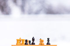Chess pieces on the snow Stock Image