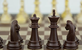 Chess pieces in soft focus. Some chess pieces, soft focus in background Royalty Free Stock Photo