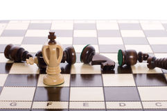 Chess pieces stored in padded box Stock Image