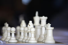 Chess pieces. White chess pieces at the start of a game Stock Images