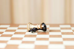 Chess pieces,winning and loosing Royalty Free Stock Photos