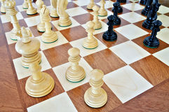 Chess pieces on wood board. Black and white Stock Photos