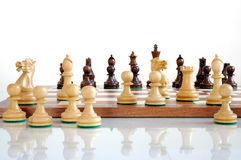 Chess pieces on wood board Royalty Free Stock Photo