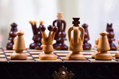 Chess pieces on the wood board Stock Image