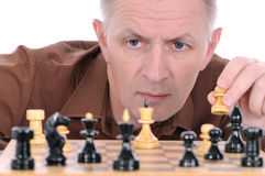 The chess player Stock Image