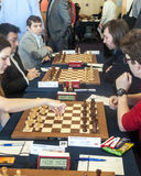 Chess players Royalty Free Stock Photos
