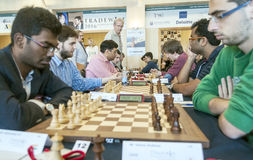 Chess players Stock Image