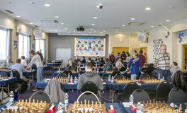 Chess players Royalty Free Stock Photo