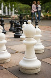 Chess playground at park Royalty Free Stock Photo