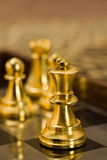 Chess (the Queen). Chess pieces (Queen) on the game board Royalty Free Stock Photo